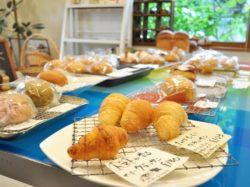 野菜パンの店 石窯パン ド・ドウ