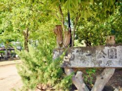 南西第一公園