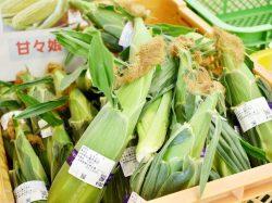 四季新鮮収穫広場「た・から」農産物直売所 3