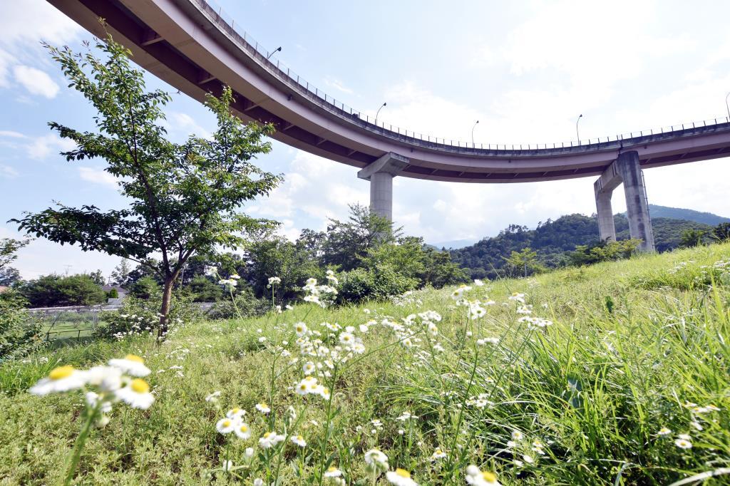 桃花橋公園