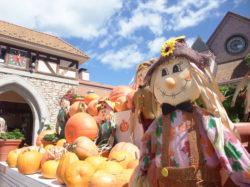 大自然の恵みを楽しむ ハイジの村 ハロウィンと収穫祭