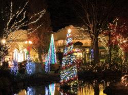 ハーブ庭園 クリスマスイルミネーション