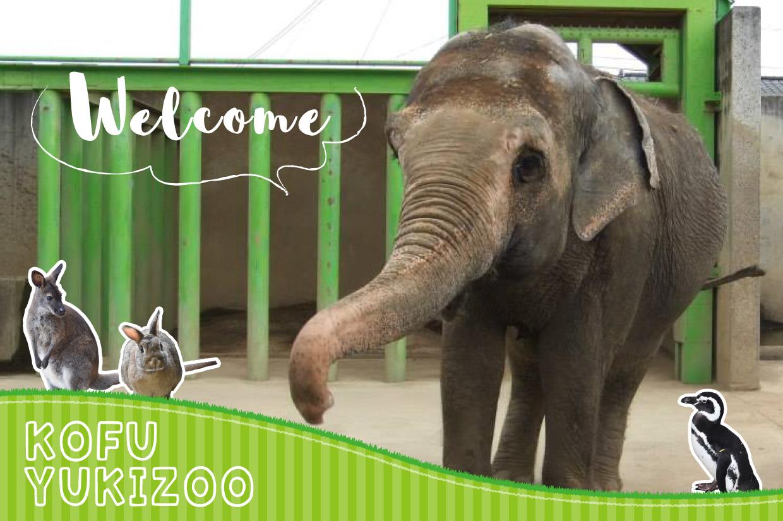 甲府市遊亀公園附属動物園トップ