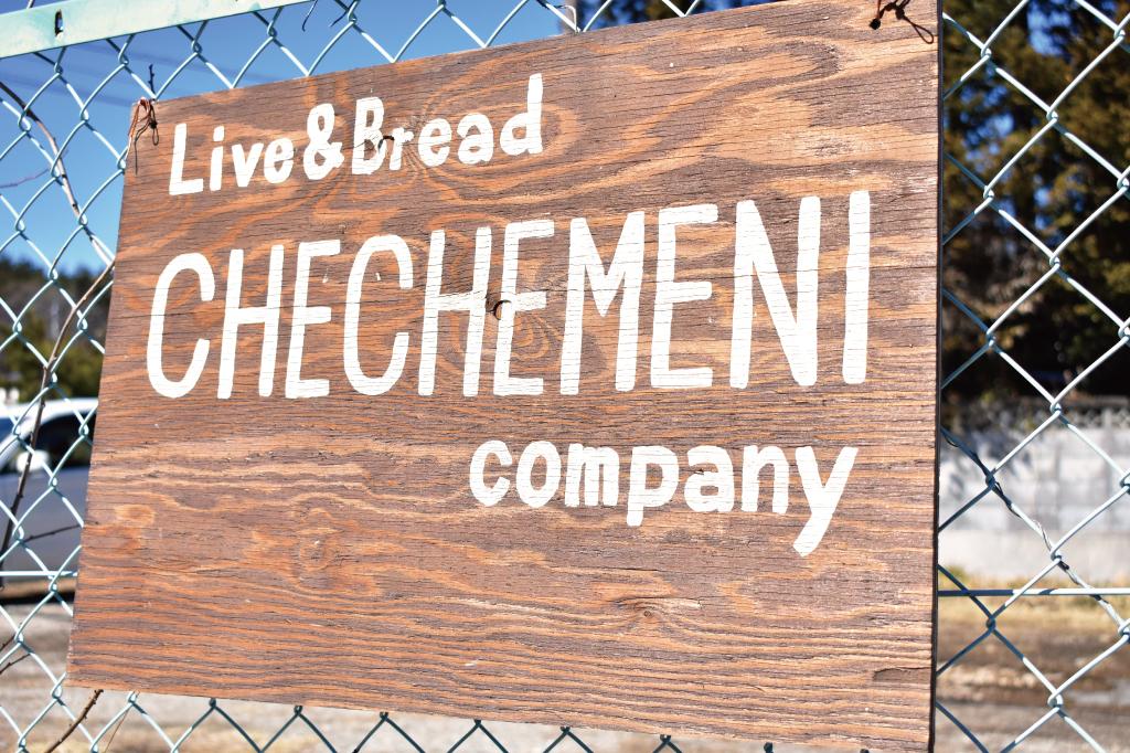 チェチェメニ