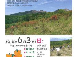 第71回 清里高原つつじ祭り~ツツジ群落再生を目指して植樹大会~