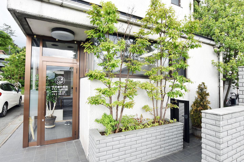 中沢歯科医院 富士吉田市 歯科 1