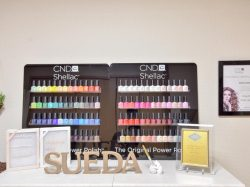 Suèda。~beauty & health~ 昭和町 エステ 2