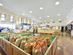 風土記の丘農産物直売所 甲府市 遊ぶ学ぶ 道の駅SAPA 2