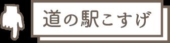 道の駅こすげ アイコン