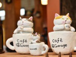 猫Garage 笛吹市 NEWショップ 5