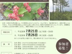 富士山五合目 植物観察会