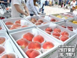 夏のフルーツ祭り