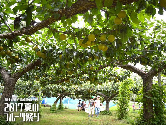 夏のフルーツ祭り 甲府市 イベント 1