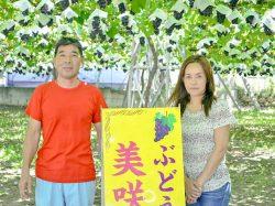 美咲園 笛吹市 観光農園 フルーツ狩り 4