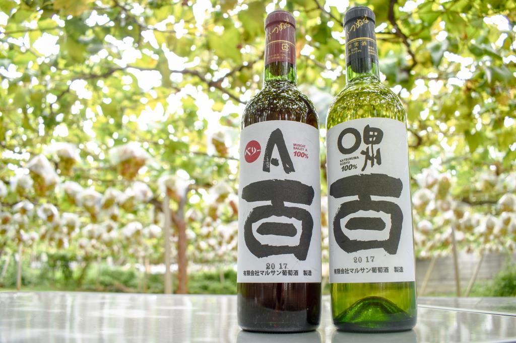 (有)マルサン葡萄酒/若尾果樹園 甲州市 遊ぶ学ぶ 4