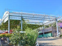 萩原フルーツ農園