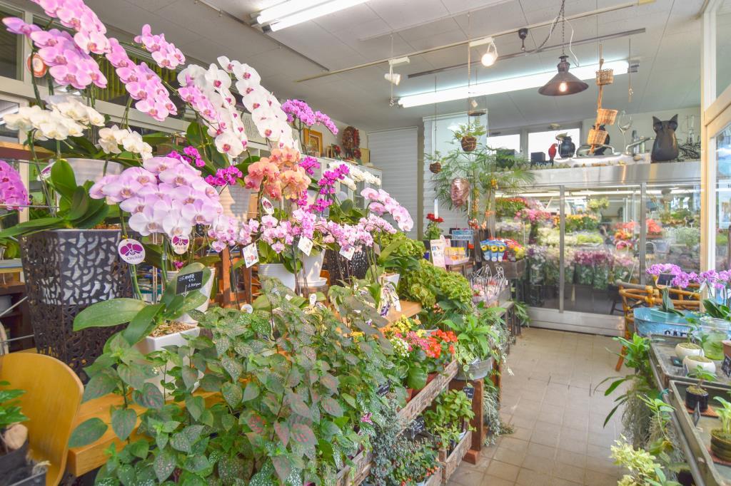 花の樹 石和町 ショップ 2