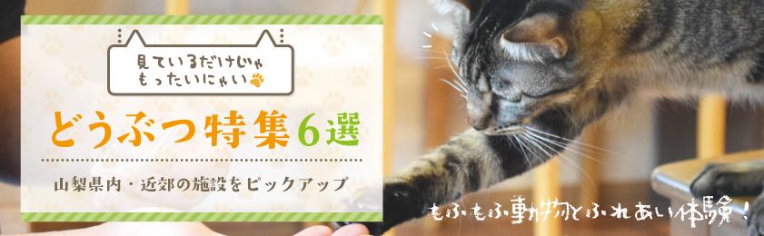 山梨の動物園・猫カフェ・牧場も | 動物ふれあい施設6選