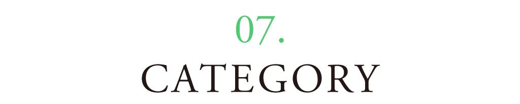 07 CATEGORY
