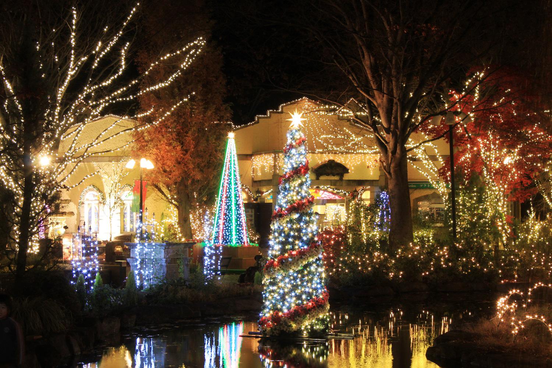 ハーブ庭園 クリスマスイルミネーション 甲州市 イベント 1