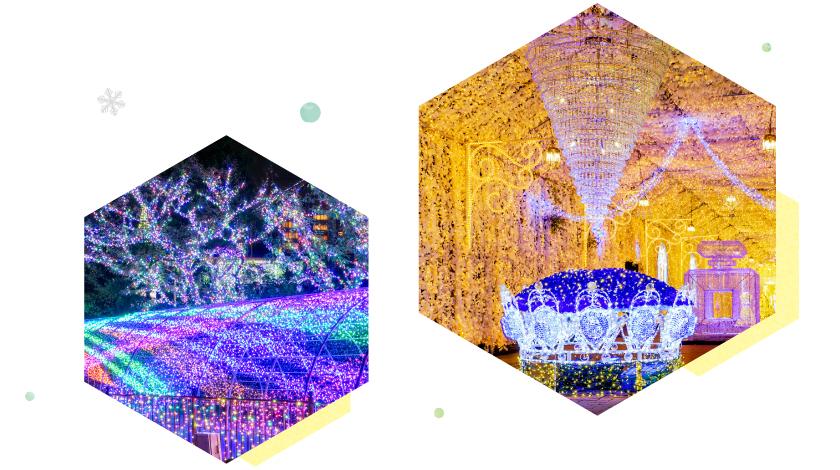イルミネーションの画像