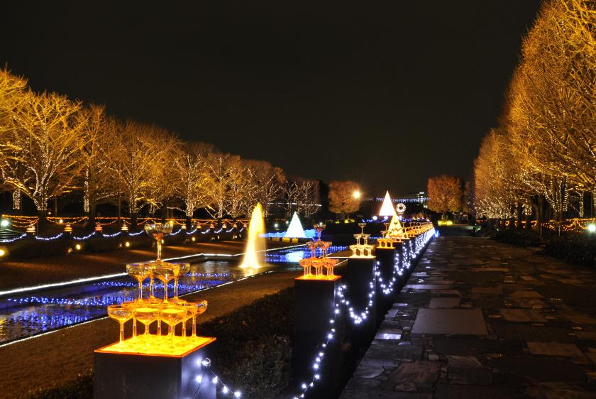 国営昭和記念公園イルミネーションのサムネイル