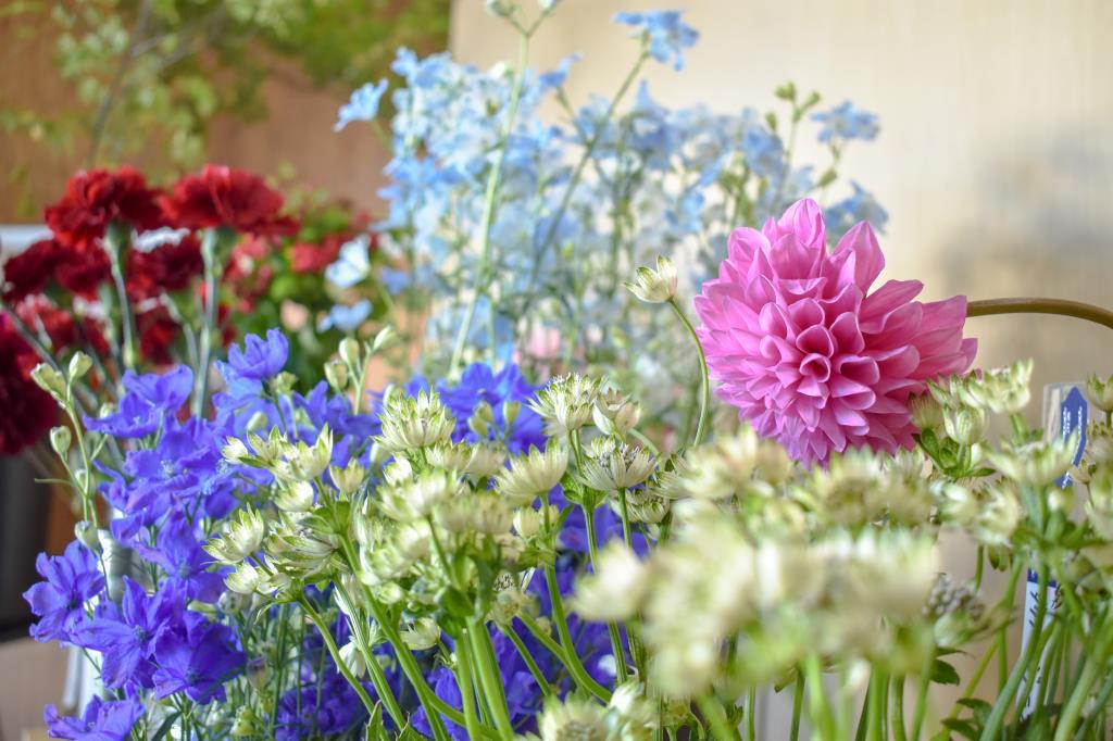 flowershop 花×hana 相和 富士河口湖町 花/ガーデニング 4