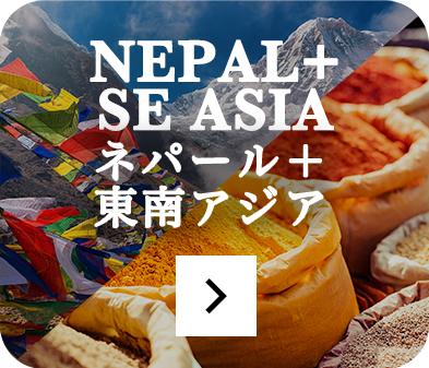 ネパール料理+東南アジア料理店のページをみる