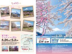 第十回 富士・河口湖さくら祭り