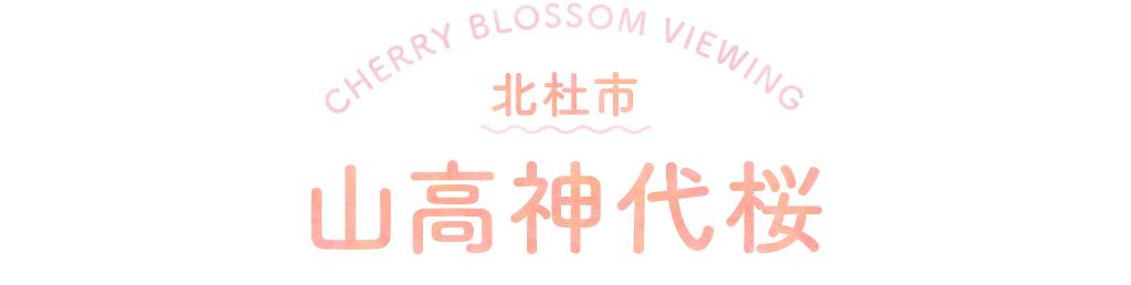 北杜市 山高神代桜