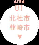 01 北杜市 韮崎市