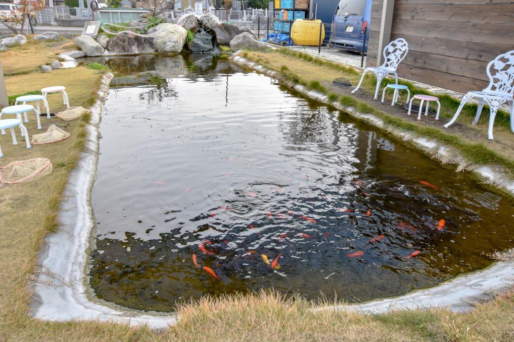 おさかなつり とと 昭和町 遊ぶ学ぶ 5