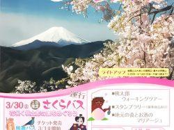 第30回 大月さくら祭り~桜咲く桃太郎の里めぐり~