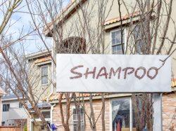 SHAMPOO美容室