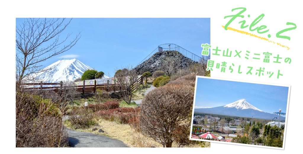 file2 富士山×ミニ富士の見晴らしスポット