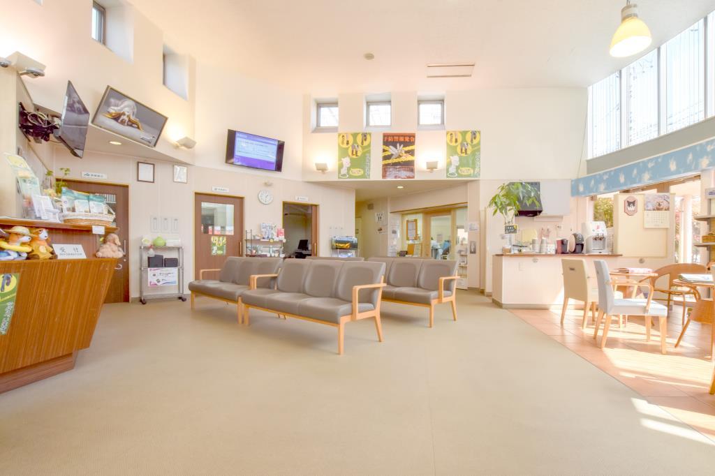 ノア動物病院 城東センター病院 甲府市 ペット 動物病院 2