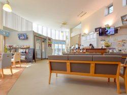 ノア動物病院 城東センター病院 甲府市 ペット 動物病院 5