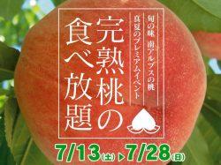 道の駅しらね 完熟桃食べ放題4