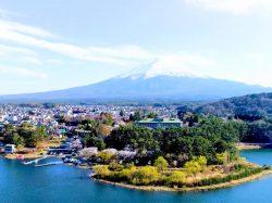 ガーデンラウンジ ラベニュー 富士河口湖町 ホテル 洋食 カフェ 5