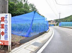 ブルーベリー摘み取り体験 大木原地区 鳴沢村 観光農園・フルーツ狩り 3