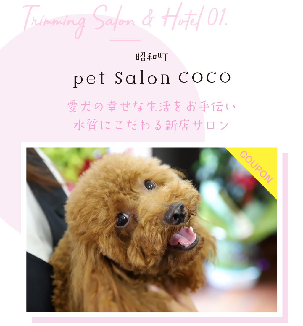 pet salon COCO