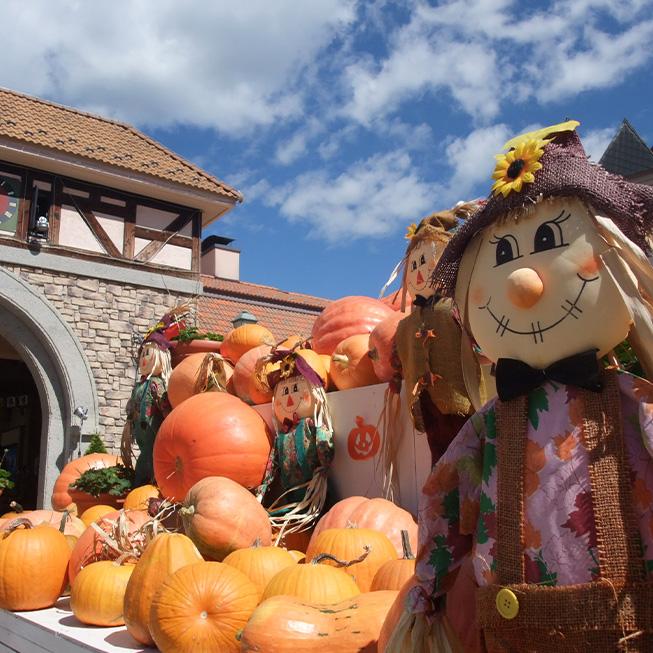 ハイジの村 ハロウィンと収穫祭の画像