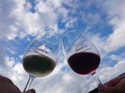 ルミエール ワイン祭り 2019
