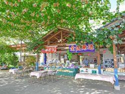 赤尾観光農園