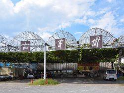 古寿園 甲州市 観光農園・フルーツ狩り 1