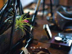 蚊帳の家 1周年記念企画 LIVE&DINNER