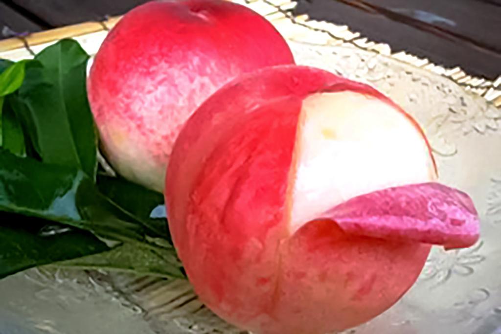 まるせい農園の桃