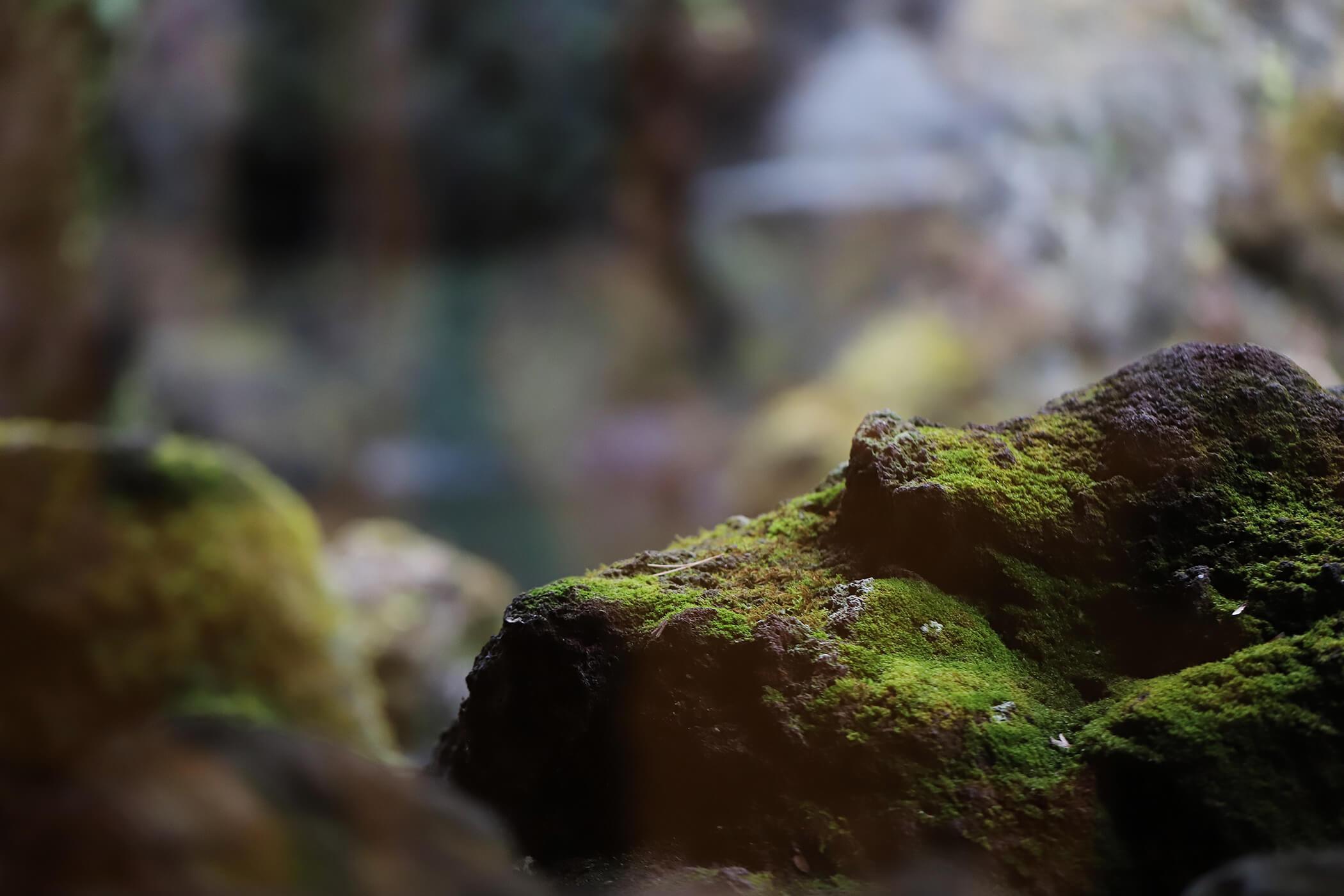 久保田一竹美術館 写真18