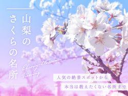 山梨の人気お花見スポット2020春~富士山との絶景や夜桜、お祭りまで