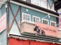 Le chateau des chats
